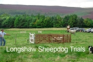 Longshaw Sheep Dog Trials are usually held in September. The Longshaw Sheep Dog Trials claim to be the oldest continuous trials in the country. They have been run from 1898 to the present day, interrupted only by the two world wars. This sheep had other ideas about being penned up.
